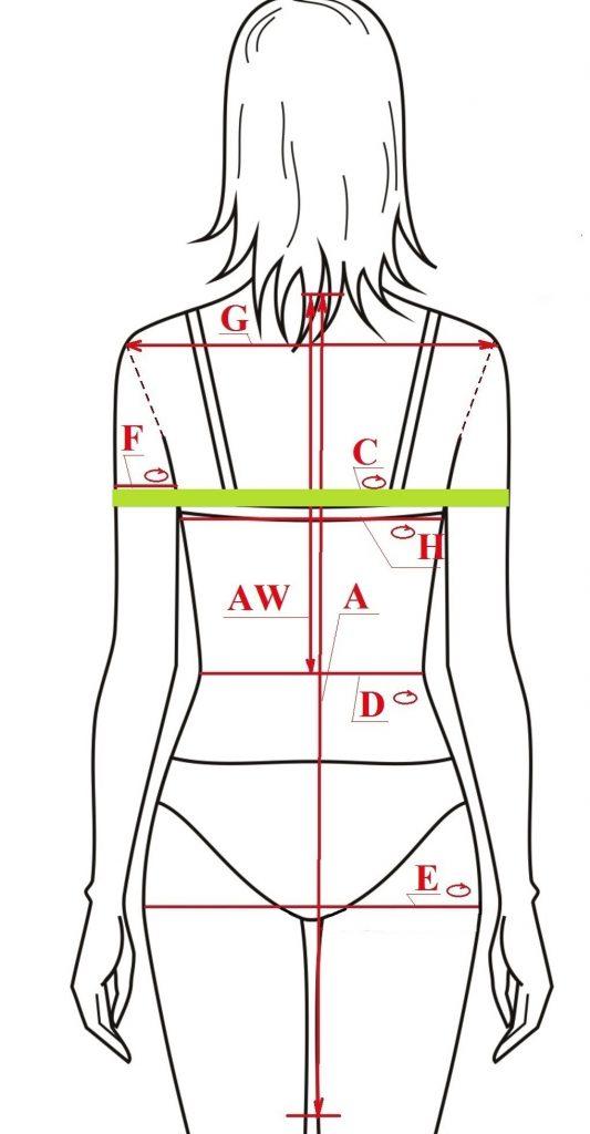 misura corpo